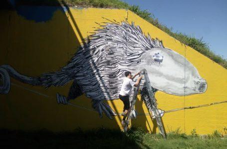 Se abre la convocatoria para murales